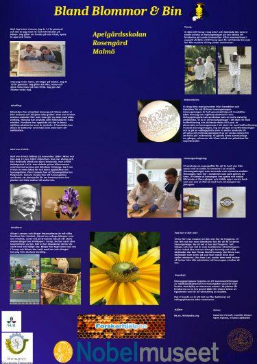 Affisch med rubriken Bland blommor och bin.