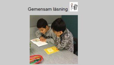 Skärmbild med instruktion för gemensam läsning.