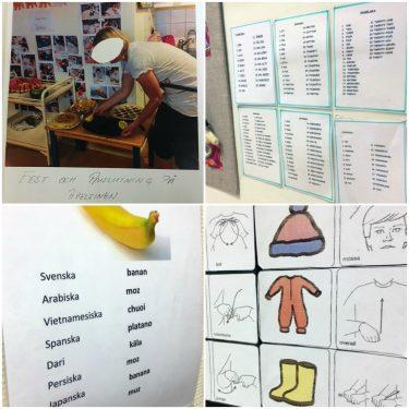 Bildstöd och olika begrepp på olika språk.