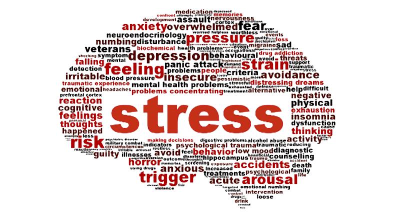 Ordmoln i form av hjärna med ordet stress markerat.