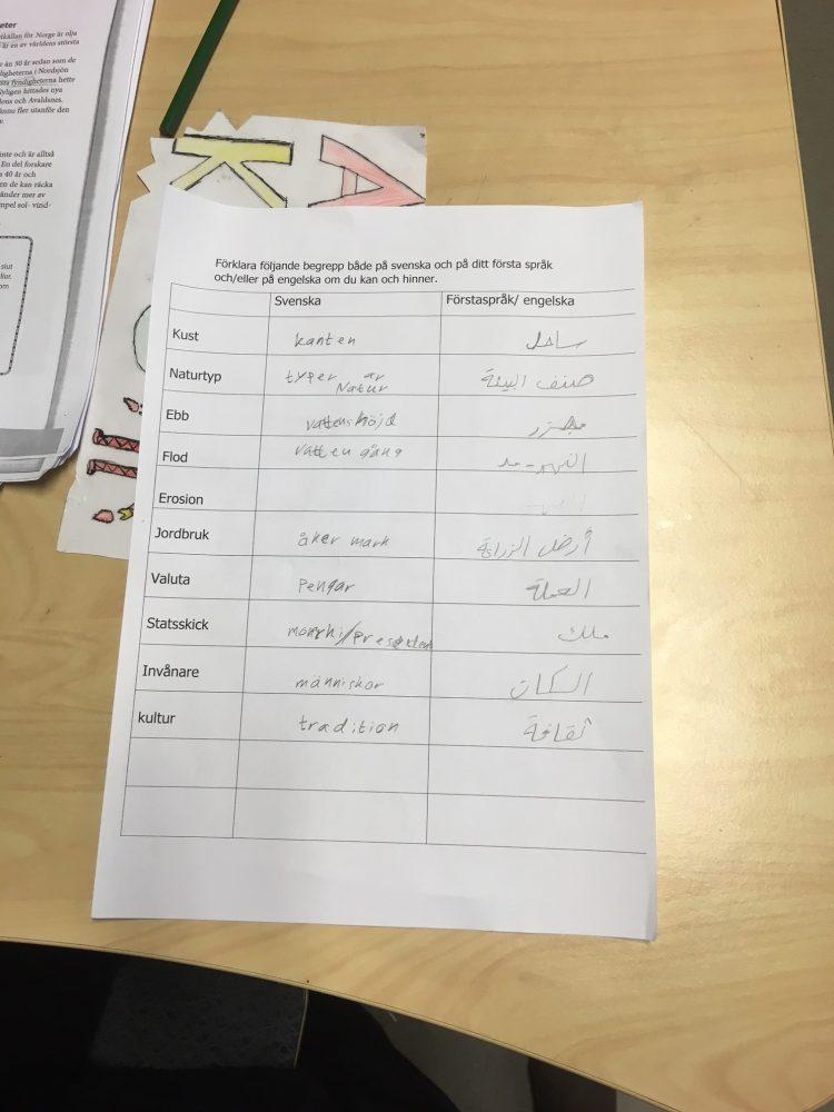 Tabell olika begrepp på olika språk.