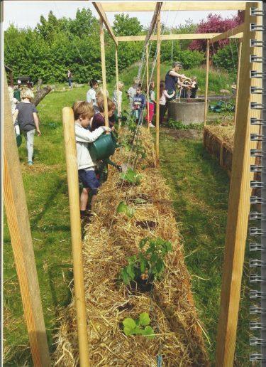 Barn odlar i odlingsbäddar.