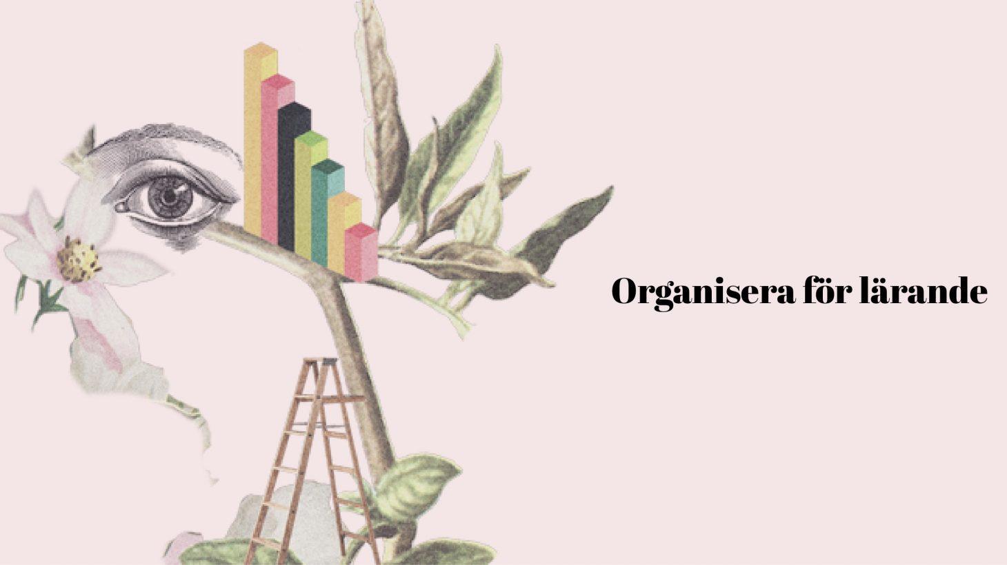 Illustration där det står Organisera för lärande.