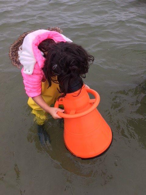 Elev undersöker havet genom tittskåp.