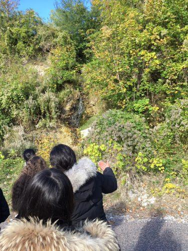 Vattenfall i skogsbryn.