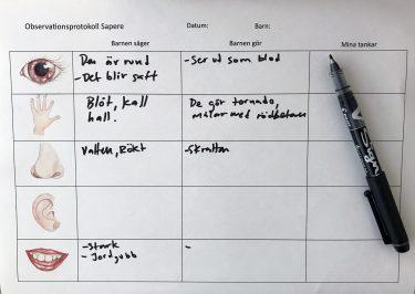 Tabell över protokoll som används vid Sapere.