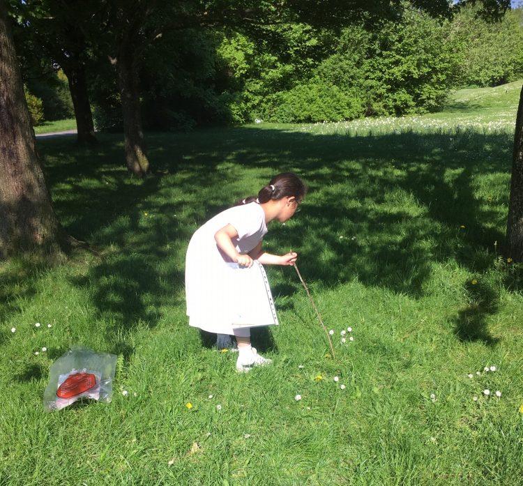 Flicka undersöker gräsmattan med pinne.