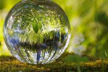 Glasboll reflekterar naturen runt om.