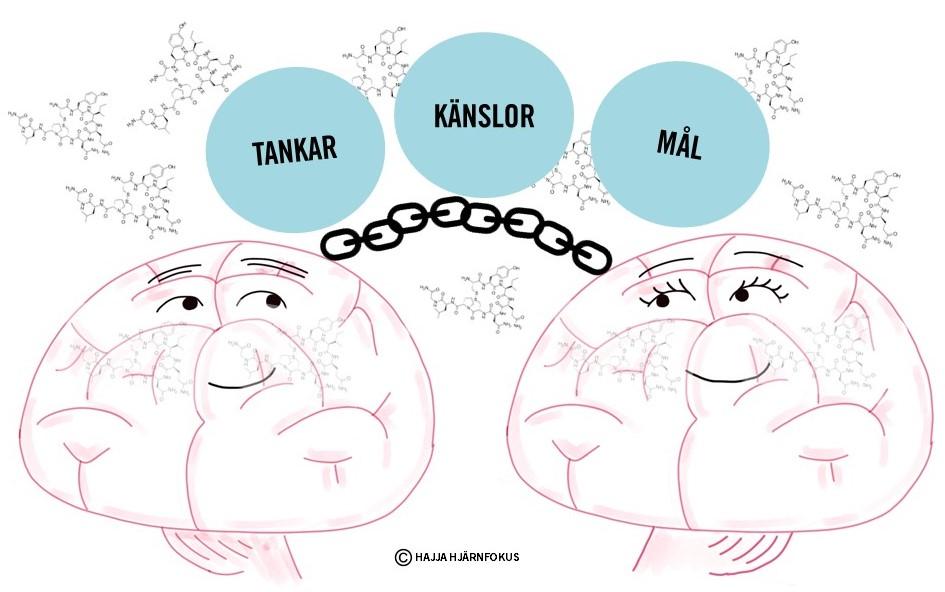 Två tecknade hjärnor som är sammanlänkade.