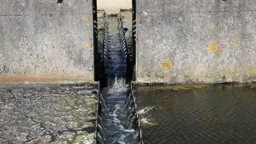 Vatten strömmar ner i en smal kanal.