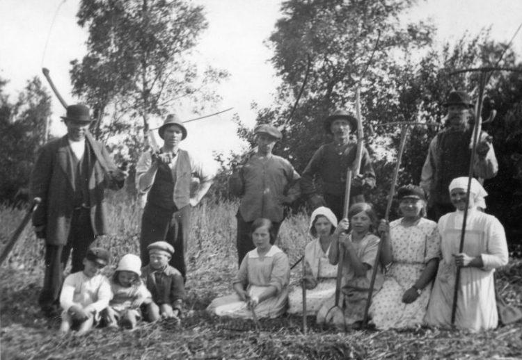 Svartvit bild med människor som sköter slåtter.