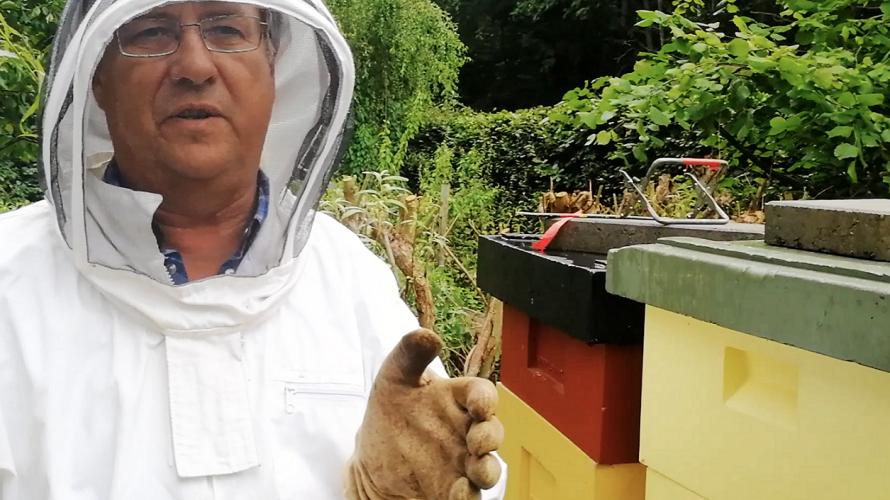 En man med skyddskläder för att inte bli stungen av bin står bredvid några bikupor.