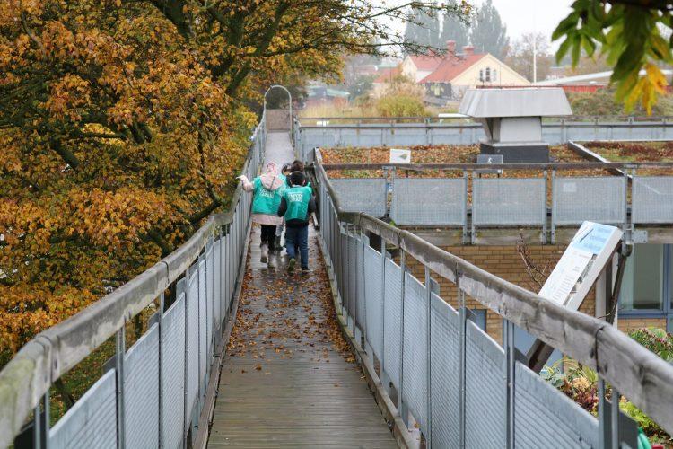 Barn går på träspång med räcken på båda sidorna.