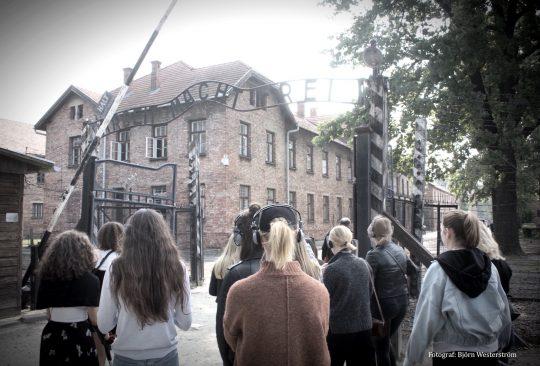 Elever går in genom porten till Auschwitz koncentrationsläger.