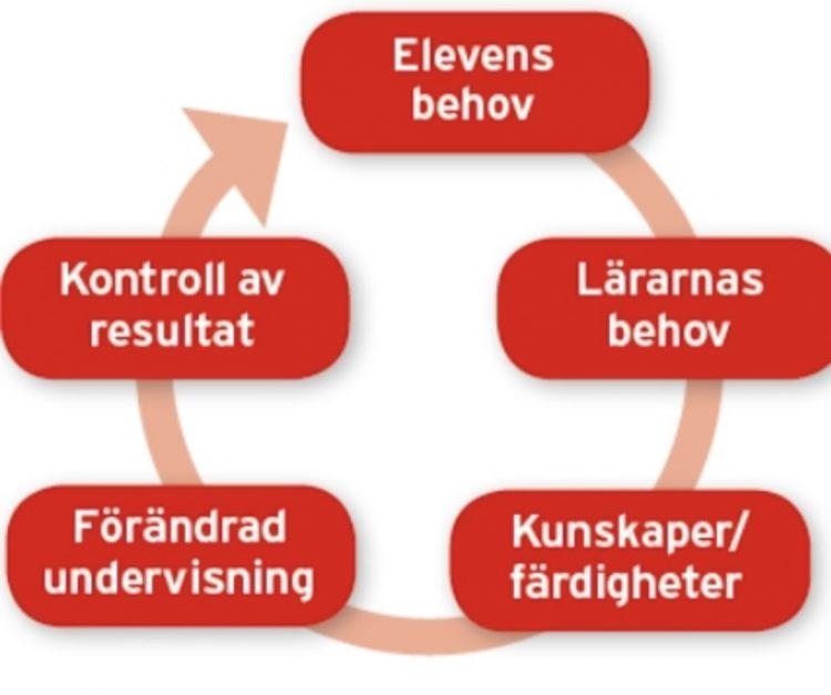 En cirkel med behov och färdigheter.