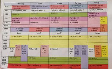 Veckoschema med veckans vardagar i ett diagram. I vänsterspalten syns tider och i de andra spalterna inskrivna aktiviteter.