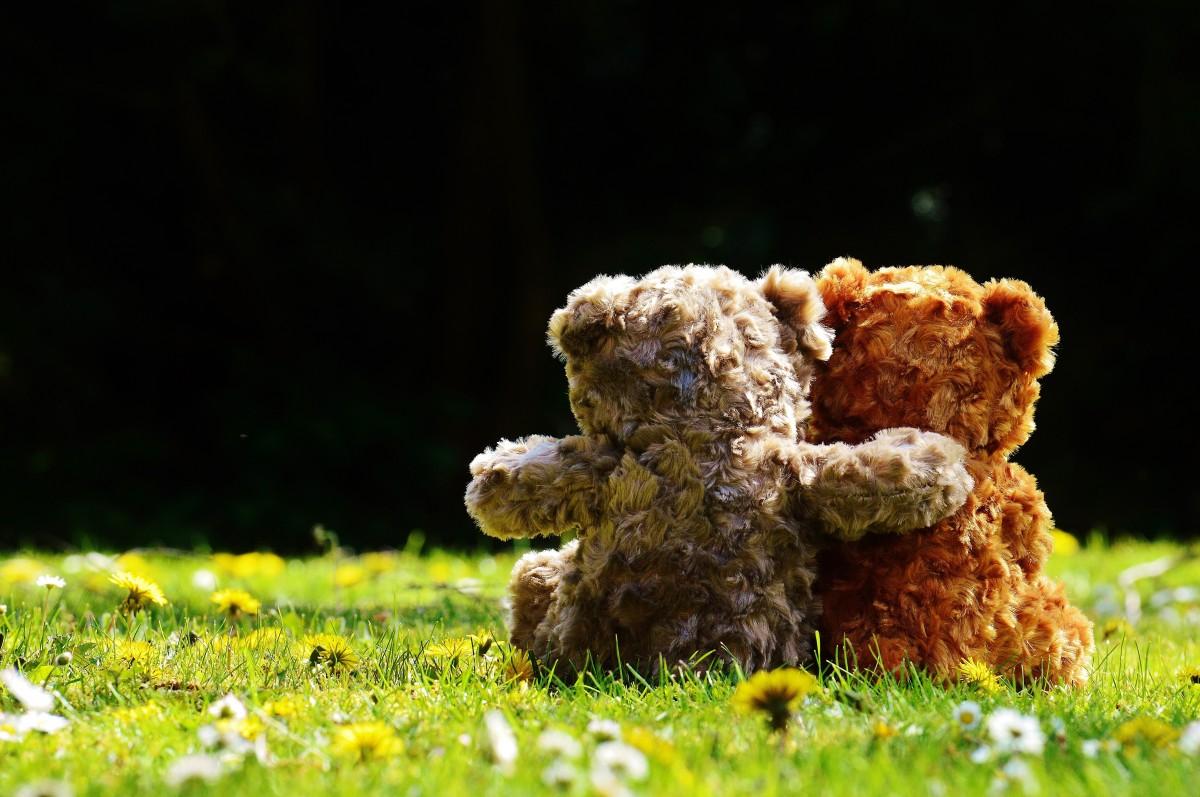 Två nallar sitter i gräsmatta och håller om varandra.