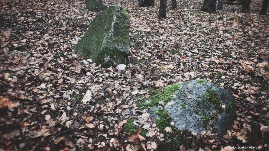 Två mossklädda stenar med inskription i skogen.