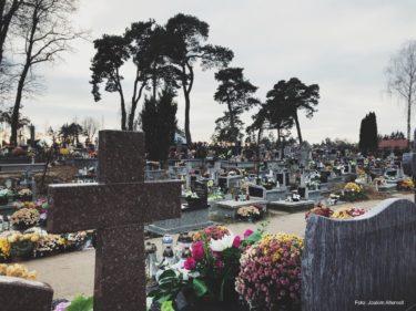 Vy över kyrkogård och gravstenar.