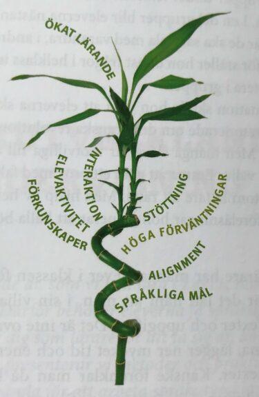 Bilden visar en bambukvist med de sex utgångspunkterna för ökat lärande skrivna runt