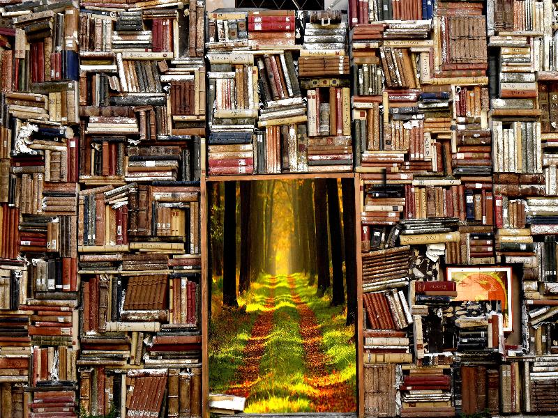 Bilden visar en överfull bokhylla med en magisk portal till skogen.